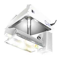 Ceramic Metal Halide Grow Lights