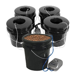 Bucket Systems