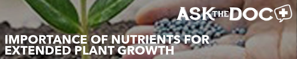 Importance of Nutrients for Extended Plant Growth