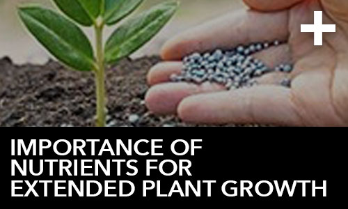 htg-info-center-ask-the-doc-articles-importance-of-nutrients-for-extended-plant-growth-thumbnail