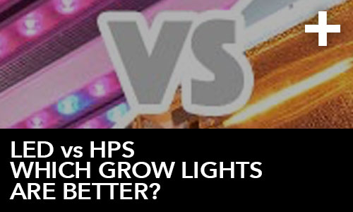 LED vs HPS - Which Grow Lights are Better? | HTG Supply