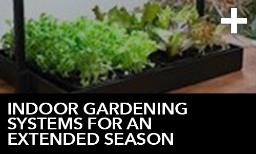 htg-info-center-ask-the-doc-articles-indoor-gardening-systems-for-an-extended-season-thumbnail