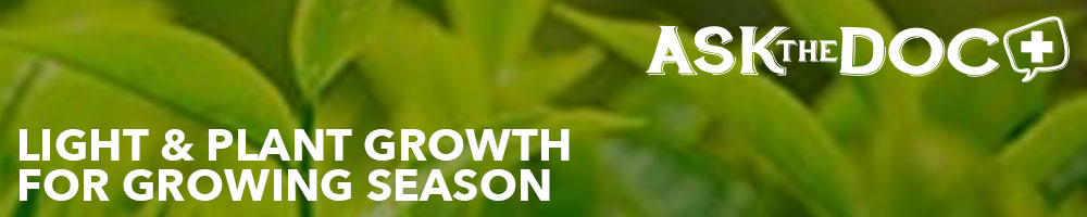 Light & Plant Growth for Growing Season