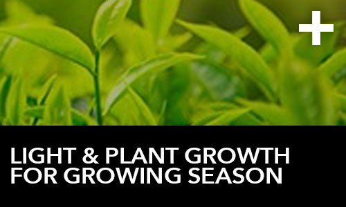 htg-info-center-ask-the-doc-articles-light-and-plant-growth-for-growing-season-thumbnail