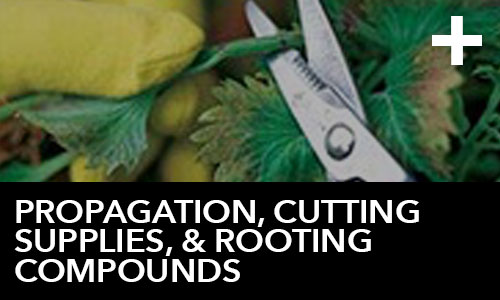 htg-info-center-ask-the-doc-articles-propagation-cutting-supplies-and-rooting-compounds-thumbnail