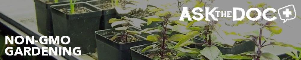 Non-GMO Gardening