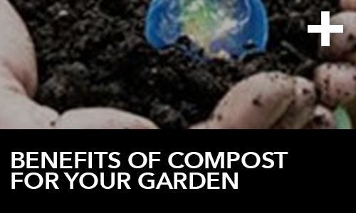 htg-info-center-ask-the-doc-videos-benefits-of-compost-for-your-garden-thumbnail