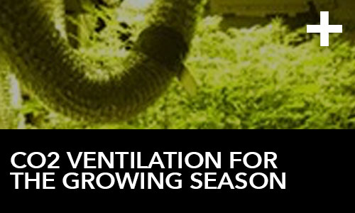CO2 Ventilation for the Growing Season | HTG Supply