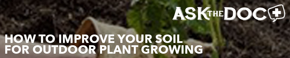 How to Improve Your Soil for Outdoor Plant Growing