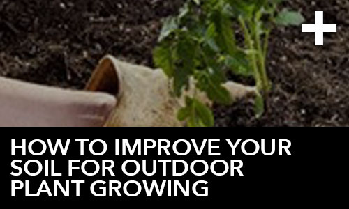htg-info-center-ask-the-doc-videos-how-to-improve-your-soil-for-outdoor-plant-growing-thumbnail