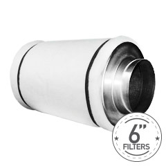 "6"" Filters"