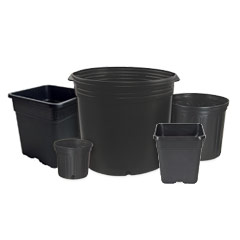 All Plastic Nursery Pots