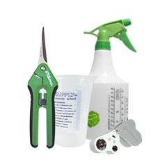 Plant Care & Maintenance