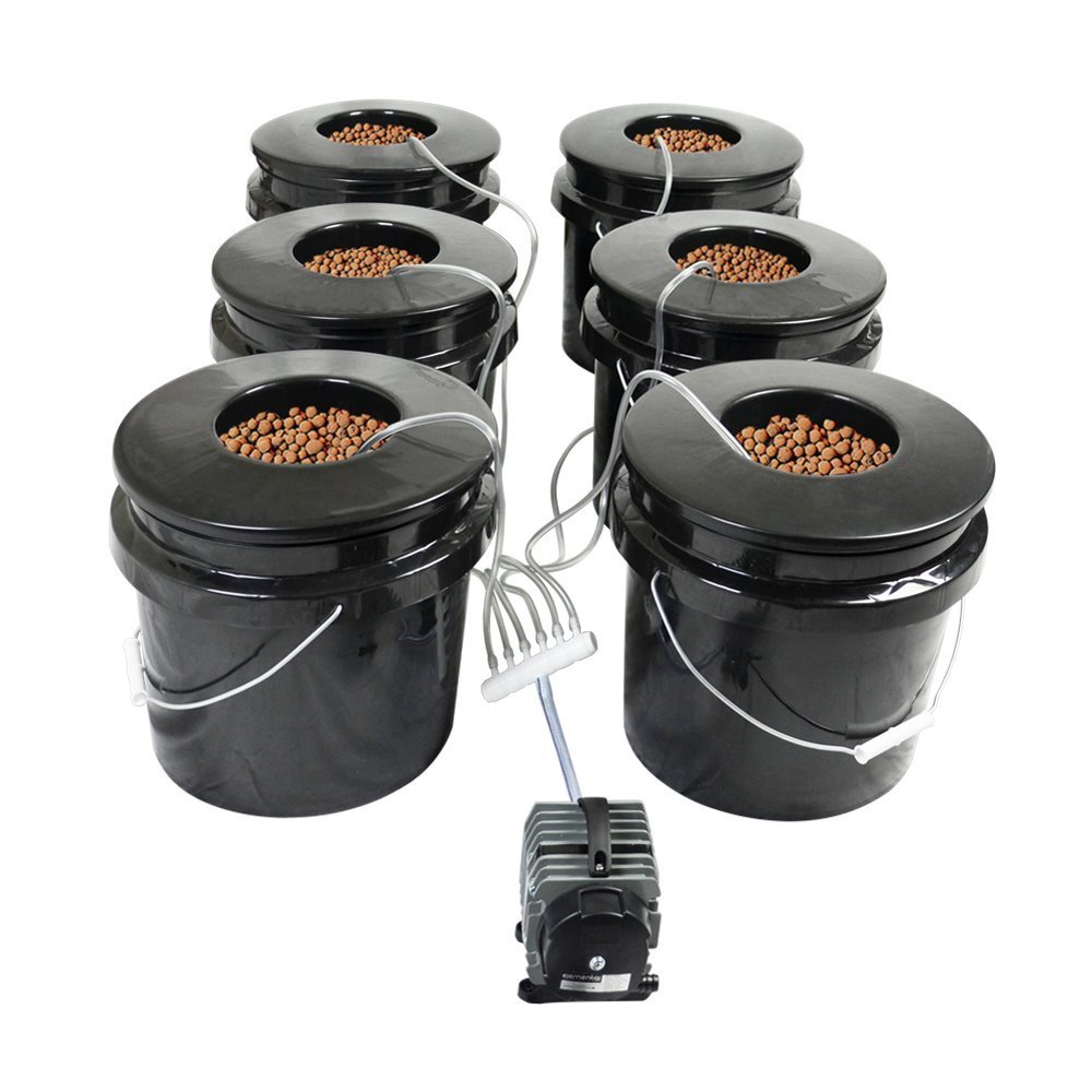 Bubble Brothers 6 Pot DWC System