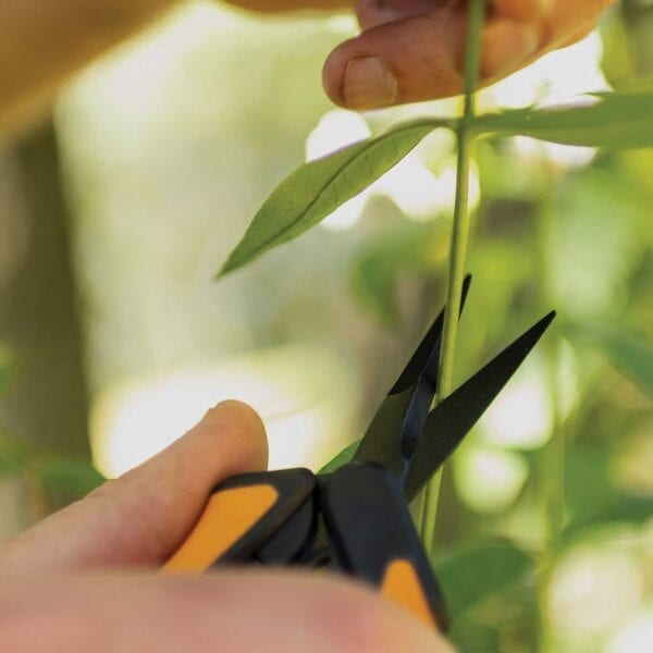 Fiskars Non-Stick Micro-Tip Purning Snips Precision