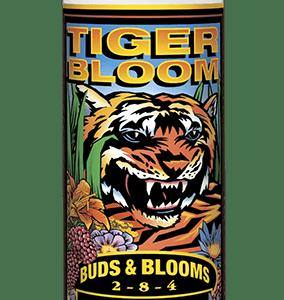 Tiger Bloom Quart