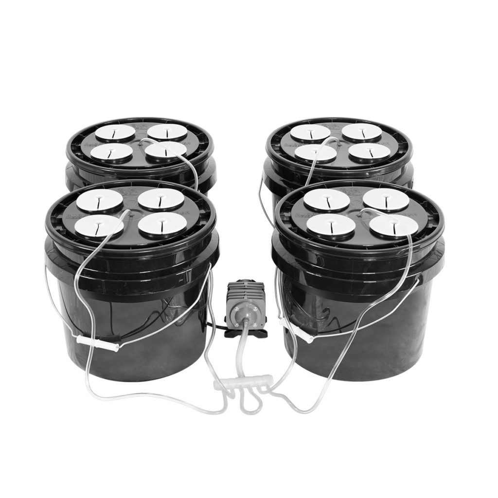 Bubble Brothers 4x4 DWC System