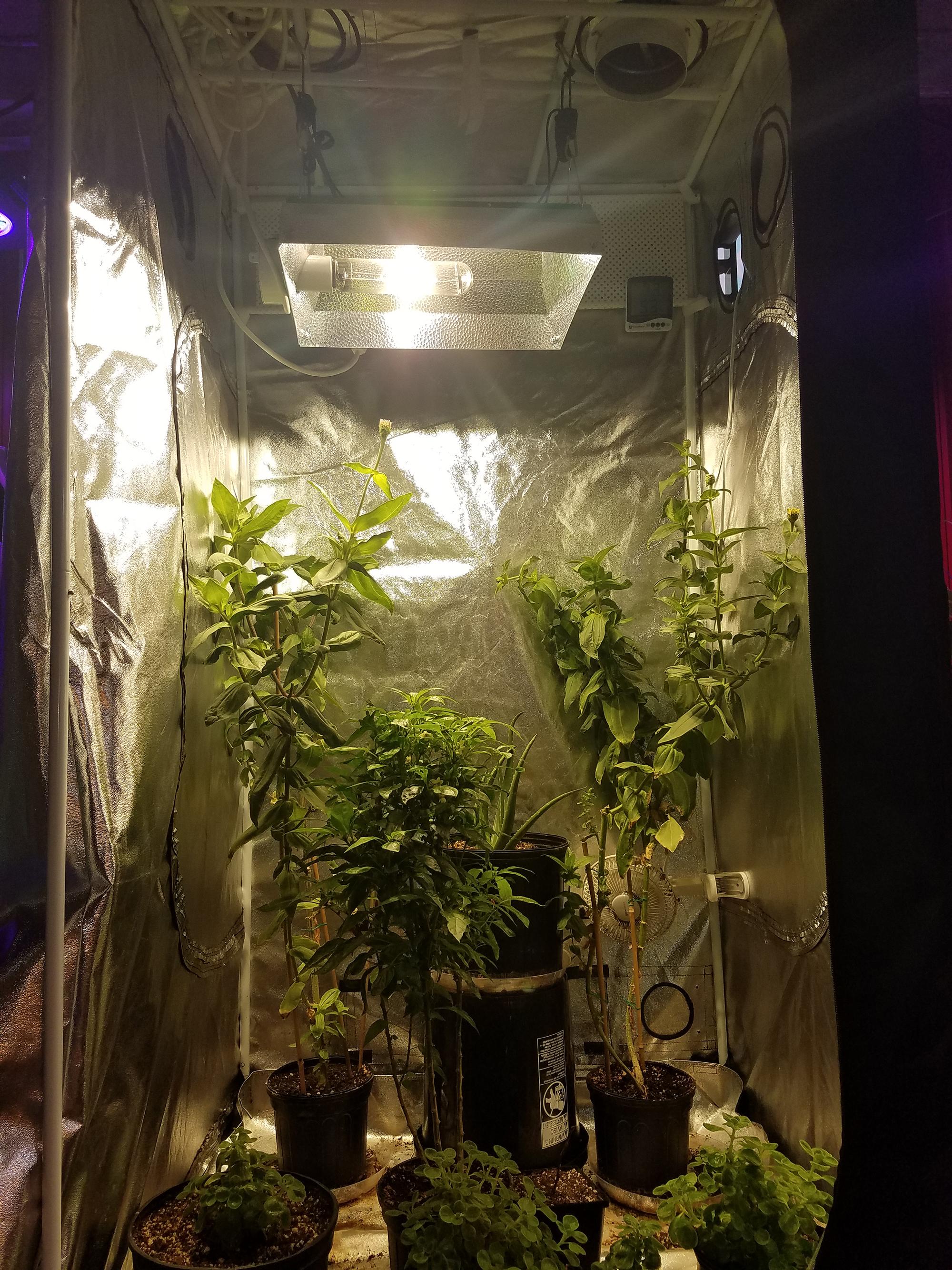 Metal Halide Grow Light Fixture