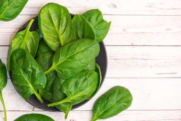 Easy Way to Grow Spinach at Home