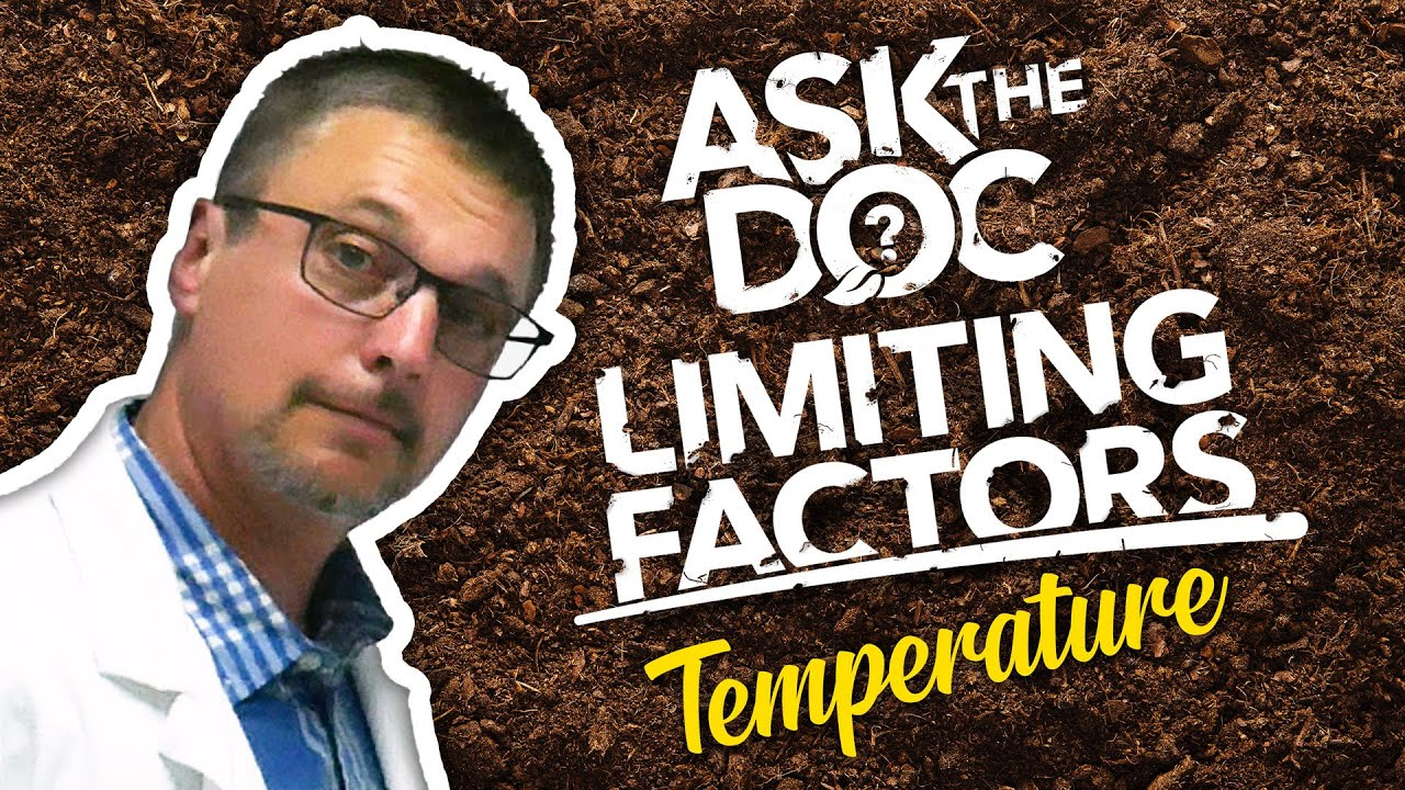 Ask the Doc: How Does Temperature Affect Plant Growth?