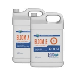 Cultured Solutions Bloom AB 2.5 Gallon