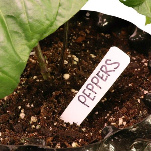 Plant Labels for Sale