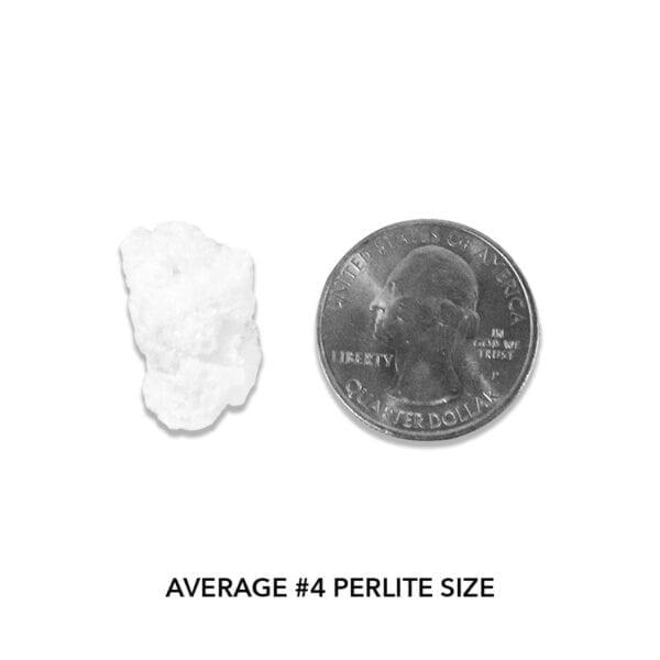 Pahroc Perlite #4 - Actual Size